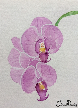 Watercolour Sketchbook by Tina Devins